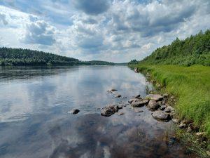 Read more about the article ELÄMÄN SYKETTÄ OUNASJOEN RANNALLA